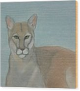 Mountain Lion - Pastels - Color - 8x12 Wood Print