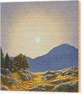 Mountain Meadow In Moonlight Wood Print