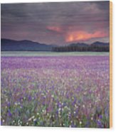 Mountain Meadow Purple Wood Print