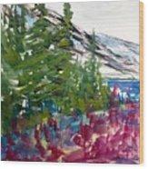 Mountain Meadow Wash Wood Print