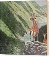 Mountain Morning Wood Print