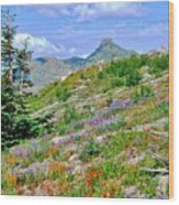 Mountain Of Color Wood Print