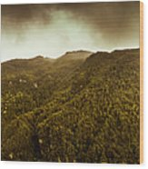 Mountain Of Trees Wood Print