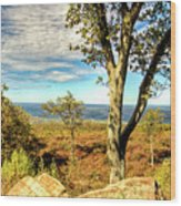 Mountain Overlook At High Point New Jersey Wood Print