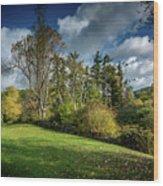 Mountain Parkway Wood Print