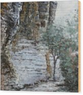 Mountain Pass Wood Print