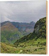 Mountain Path Horiz Wood Print