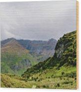Mountain Path Vert Wood Print