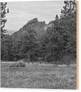 Mountain Peak Through The Trees In Black And White Wood Print