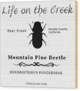 Mountain Pine Beetle Black On White Wood Print