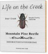 Mountain Pine Beetle Color Wood Print