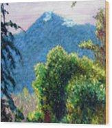 Mountain Rain Forrest Wood Print