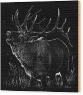 Mountain Reveille Wood Print
