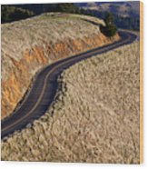 Mountain Road Wood Print by Garry Gay
