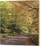 Mountain Road Stowe Vt Wood Print