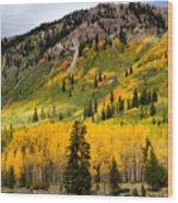 Mountain Side Autumn Wood Print