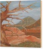 Mountain Side Wood Print