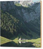 Mountain Sight Wood Print