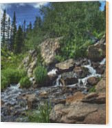 Mountain Stream 3 Wood Print