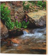 Mountain Stream Garden Wood Print