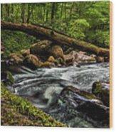 Mountain Stream Iv Wood Print