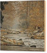 Mountain Stream With Tree Overhang #1 Wood Print