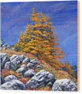 Mountain Tamaracks Wood Print