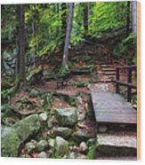 Mountain Trail With Staircase In Autumn Forest Wood Print