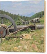 Mountain Treasures 2 Wood Print