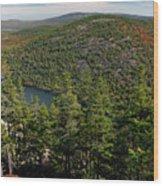 Mountain View, Acadia National Park Wood Print