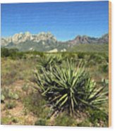 Mountain View Las Cruces Wood Print