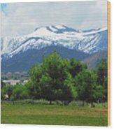 Mountain View - Reno Nevada Wood Print
