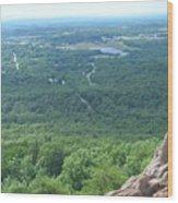 Mountain Views Wood Print