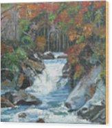 Mountain Waterfall Wood Print