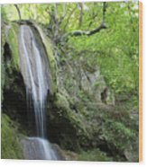 Mountain Waterfall Spring Nature Scene Wood Print