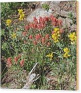 Mountain Wild Flowers Wood Print