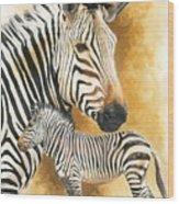 Mountain Zebra Wood Print