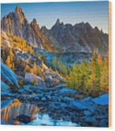Mountainous Paradise Wood Print