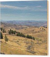 Mountainous Terrain In Central Oregon Wood Print