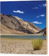Mountains And Green Vegetation Chagor Tso - Lake Leh Ladakh Jammu Kashmir India Wood Print
