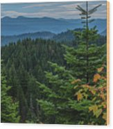 Mountains Around Priest Lake Wood Print