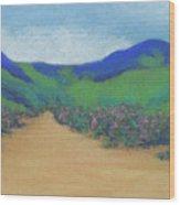 Mountains At Moholoholo Wood Print