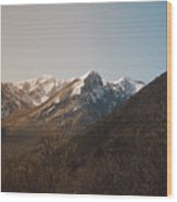 Mountains In The Background Xviii Wood Print