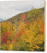 Mountains In The Fall Colors Wood Print
