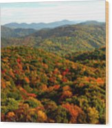 Mountains Of Color Wood Print