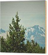 Mountains Of Oregon Wood Print