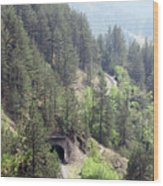 Mountains With Railroad And Tunnels  Wood Print