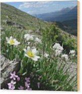 Mountainside Wood Print