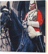 Mounted Life Guard Wood Print
