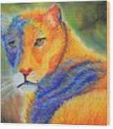 Mountian Lion 1 Wood Print